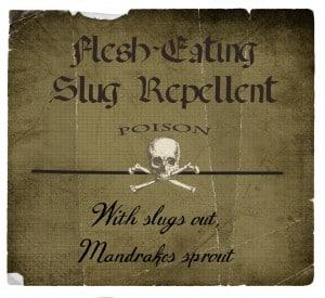 flesh eating slug repellent 300x275 Halloween Decor: Harry Potter Potion Bottles