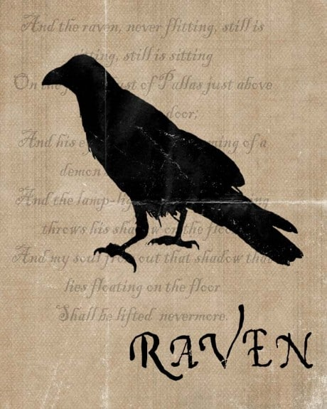 raven 460x575 Halloween Decor: Harry Potter Potion Bottles