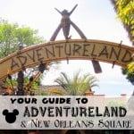 Adventureland button copy