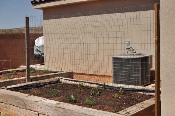 DSC 0051 Gardening Basics   Soil Prep
