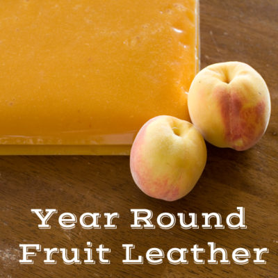 How to Make Fresh Fruit Leather All Year Long