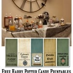 Harry Potter 2 liter bottle labels 1