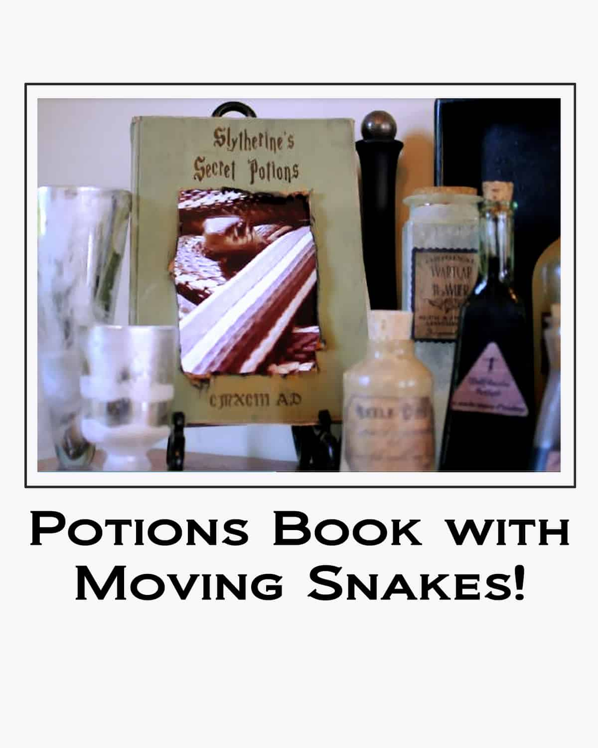Potions Book with Moving Snakes button