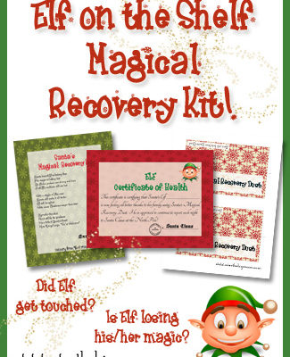 Elf on the Shelf Magical Recovery Kit