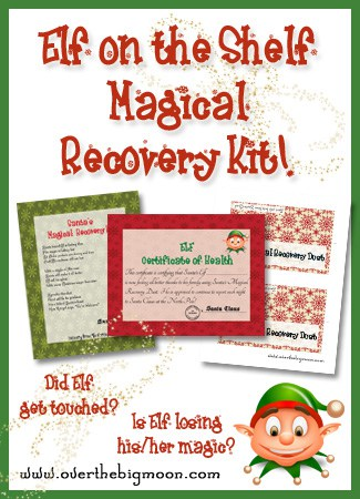 ElfRecoveryButton Elf on the Shelf Magical Recovery Kit