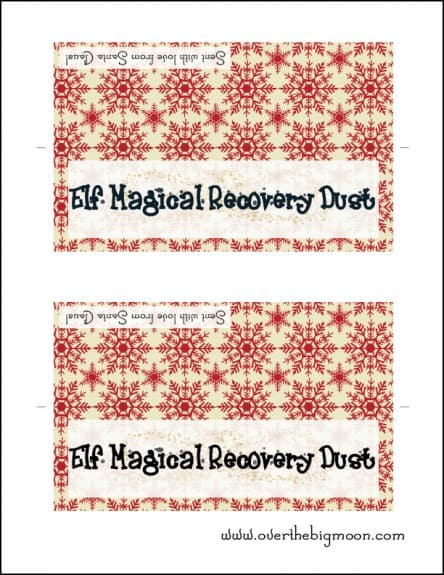 ElfRecoveryKit31 444x575 Elf on the Shelf Magical Recovery Kit