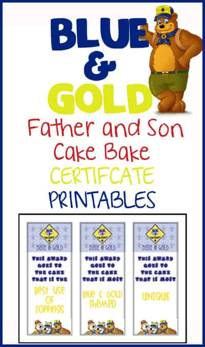 Blue & Gold Cake Bake Certificates - Over The Big Moon