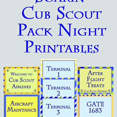 Soarin' Themed Cub Scout Pack Night