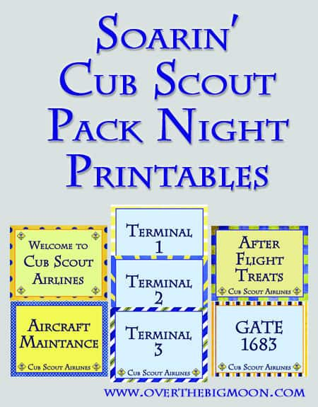 CubScoutButton Soarin Themed Cub Scout Pack Night