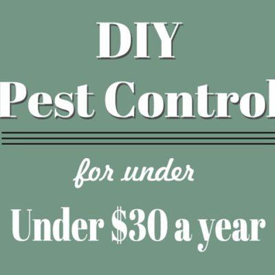 DIY Pest Control for Under $30 a Year