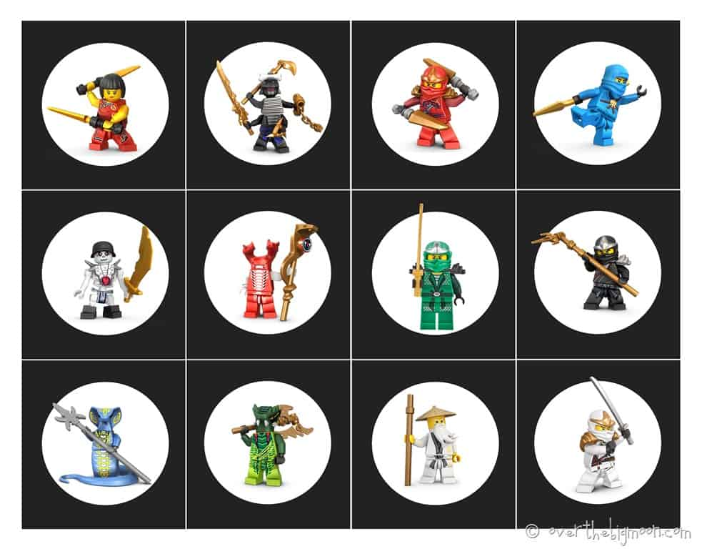 Ninjago Birthday Party With Free Printables