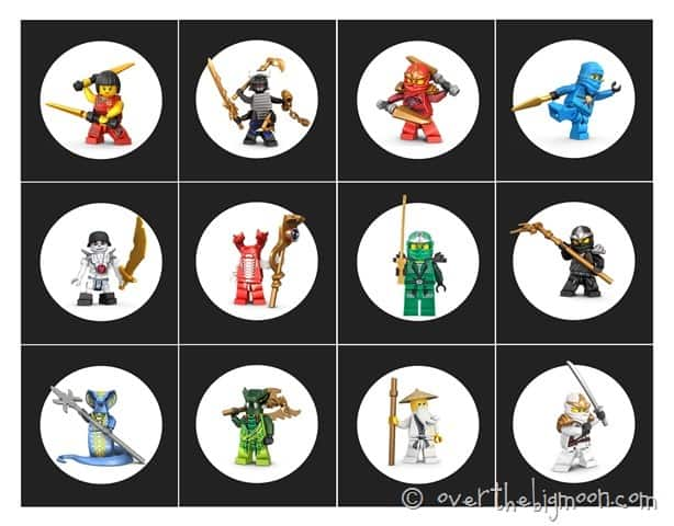 stealth samurai thumb Ninjago Birthday Party with Free Printables
