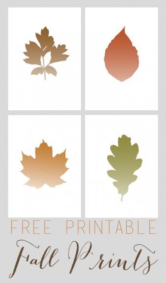 fall prints12