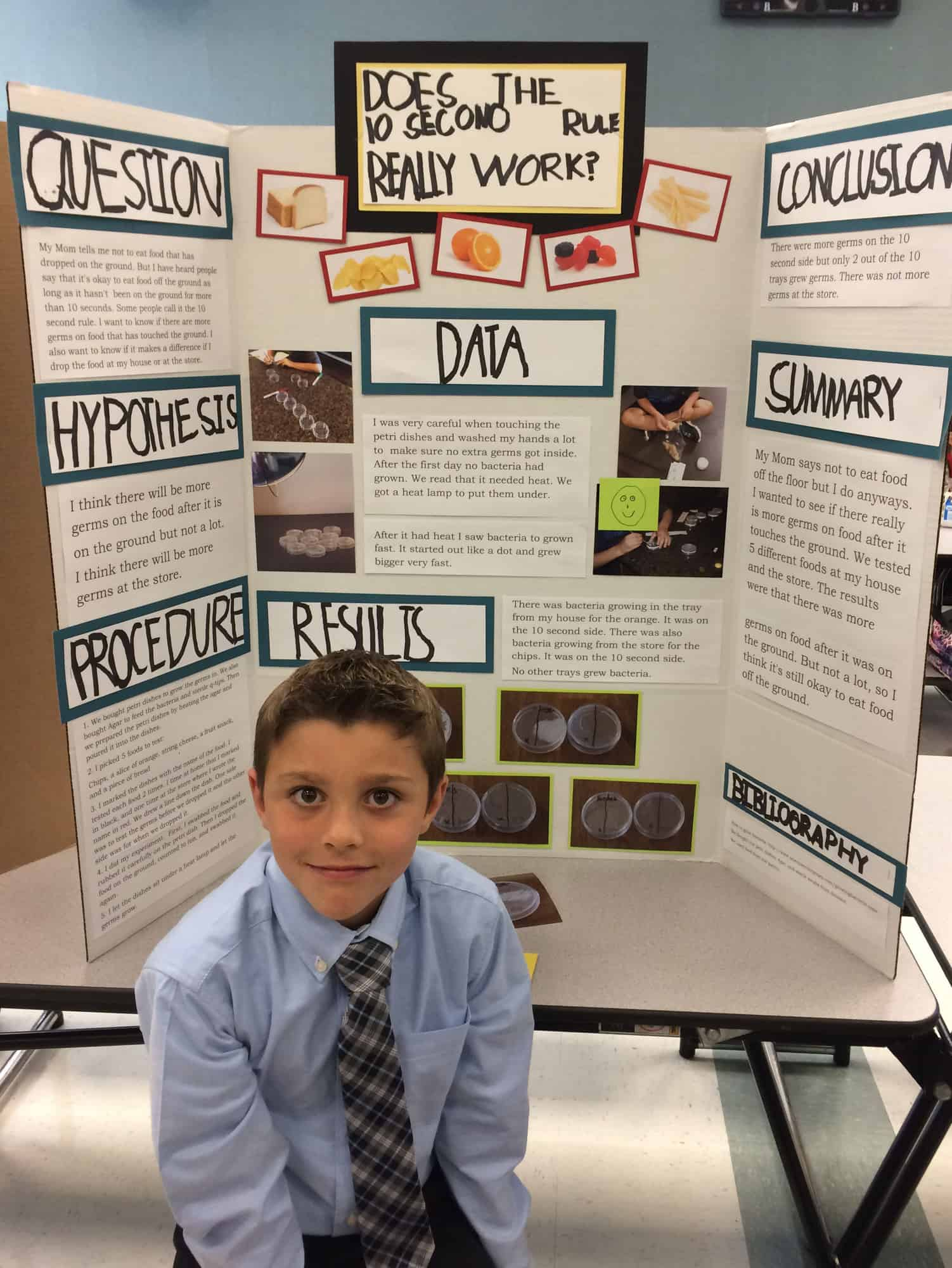 Pay someone to do your school project