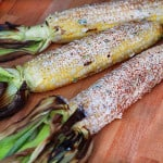 This Mexican Grilled Corn on the Cob is to die for and needs to be a big party of your grilling season! It is seriously my new obsession! From www.overthebigmoon.com!