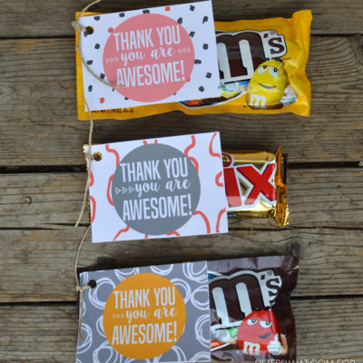 Thank You - You are Awesome Gift Tags from www.overthebigmoon.com!