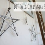 Winter Twig Star Decoratio
