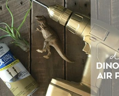 DIY Dinosaur Air Plant Vase
