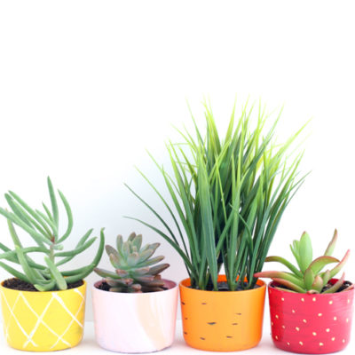 DIY Fruit and Veggie Succulent Planters! The perfect Spring DIY! Find at www.overthebigmoon.com!