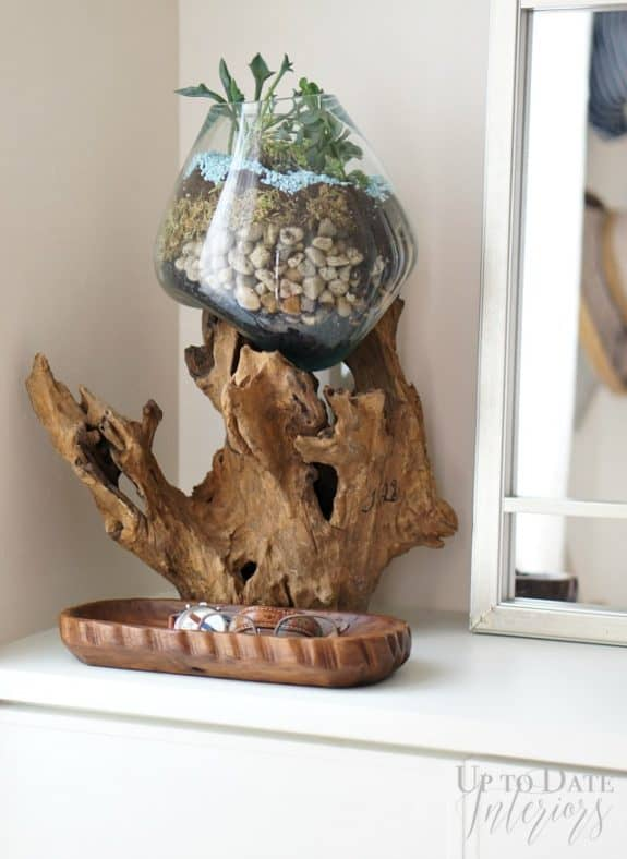 diy-terrarium-glass-wood
