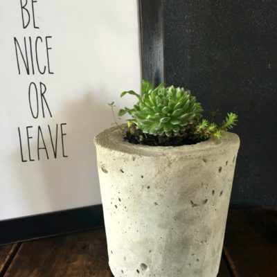 DIY Cement Planter - this looks so much easier then I expected it to be!