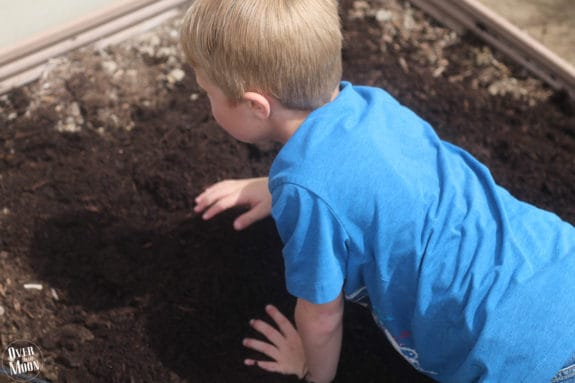 Kids Garden Tips | www.overthebigmoon.com