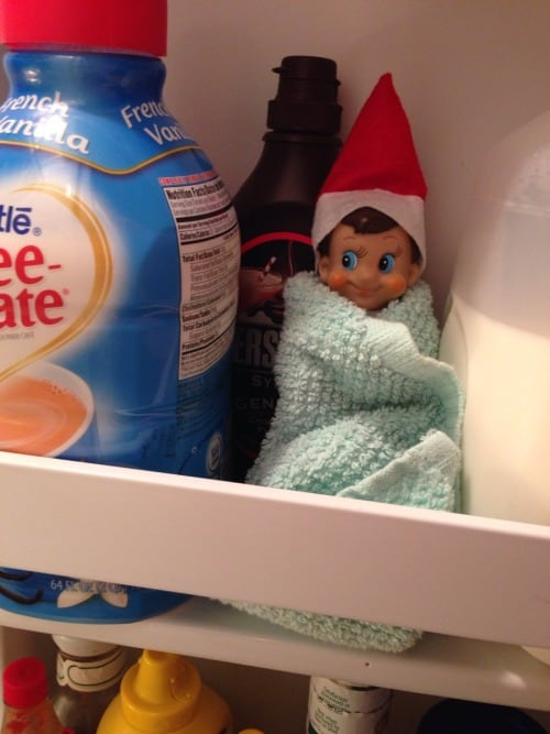 Elf wrapped in dish wrap to keep warm in the fridge