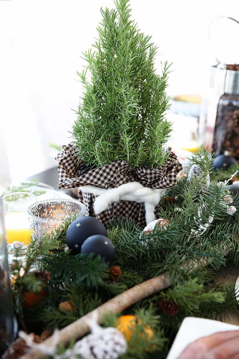 Woodsy Christmas Centerpiece Idea - perfect for a Christmas Breakfast or Dinner!