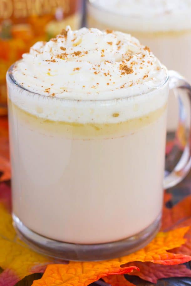 60+ Pumpkin Flavored Recipes - including pumpkin dinners, pumpkin drinks, pumpkin desserts, pumpkin breads and more! From overthebigmoon.com!